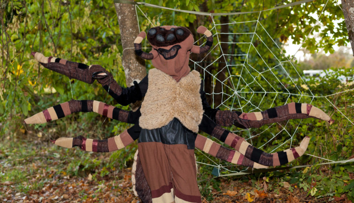 Grandma Spider at the Haunted Hike