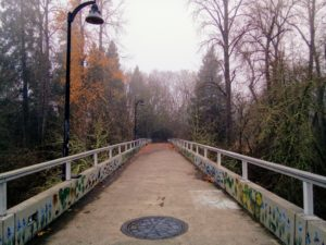 Frohnmayer Footbridge in Winter